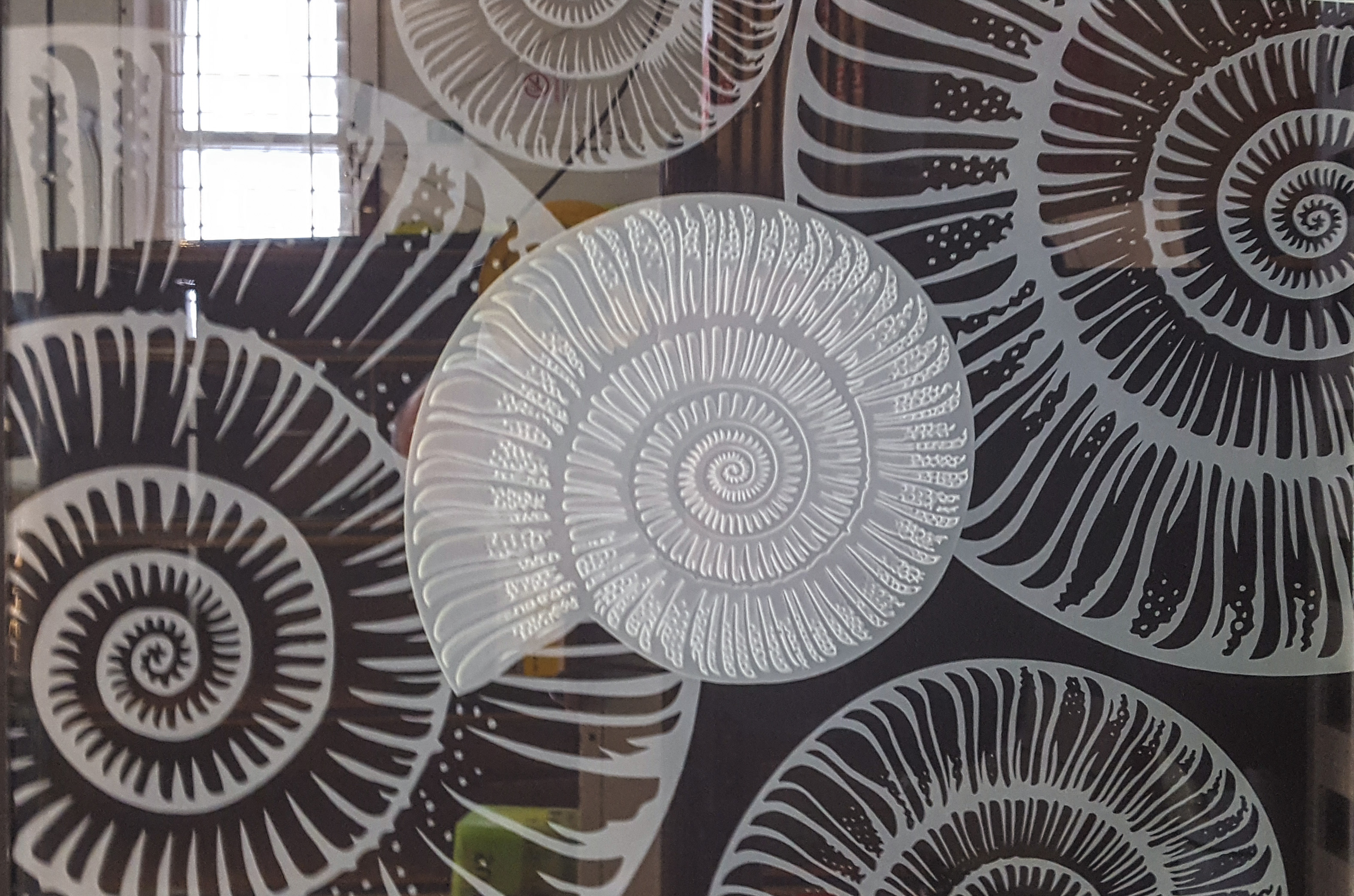 Sandblasted Glass ammonite