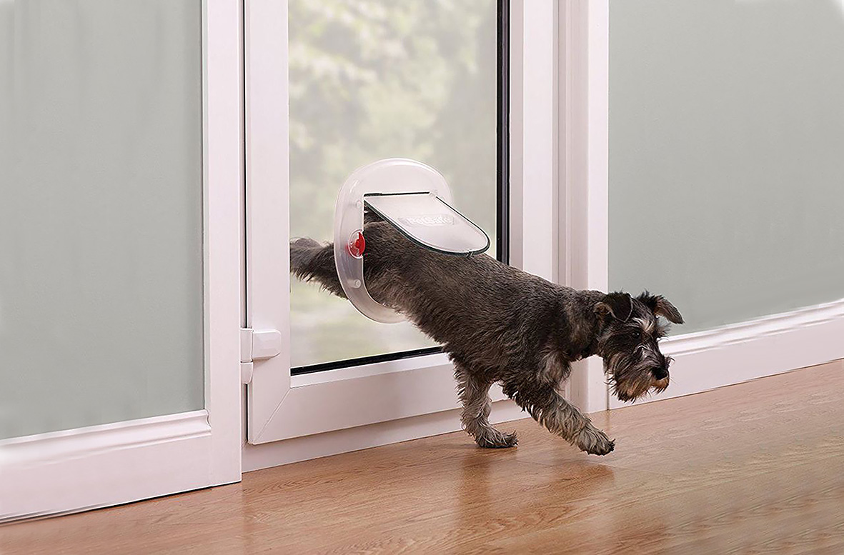 dog flap